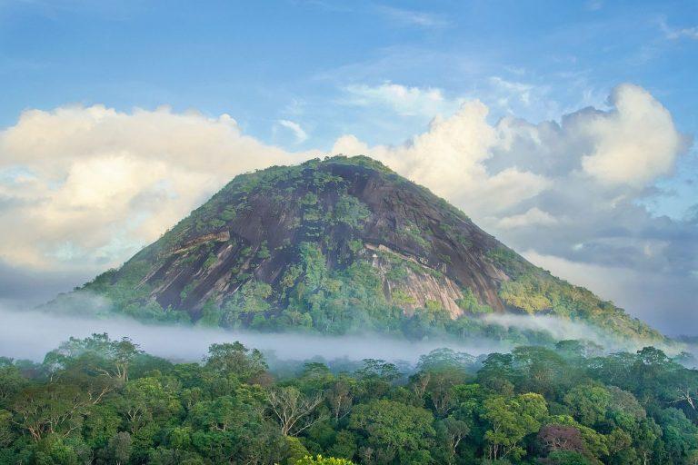 Vue de la région d'Amapa au Brésil